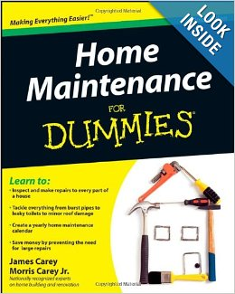HomeMaintenanceforDummiesbytheCareyBrothers_