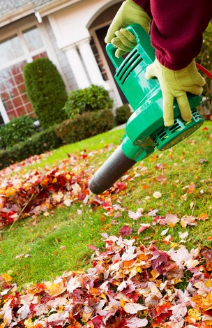the_leaf_blower_is_electrified_162136418