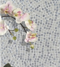 Emser Tile - CHARM Collection