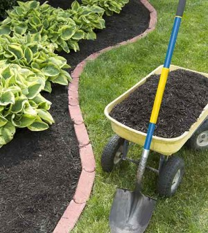 Prepping Your Home for the Spring