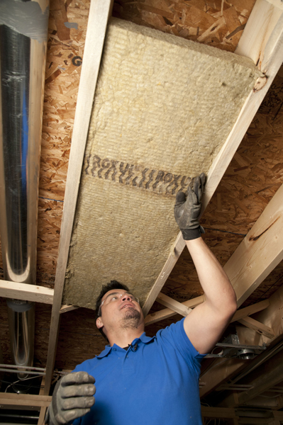 Sound Insulation for the Home - On the House