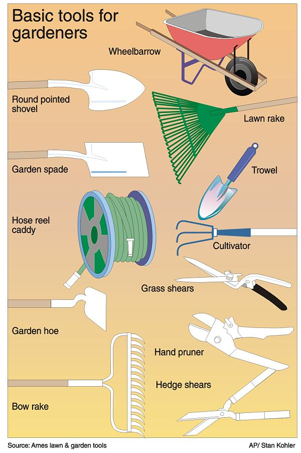 Basic tools you need for gardening