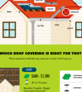 roof infographic