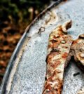 prevent rusted tools