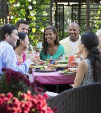 back yard party tips about pests
